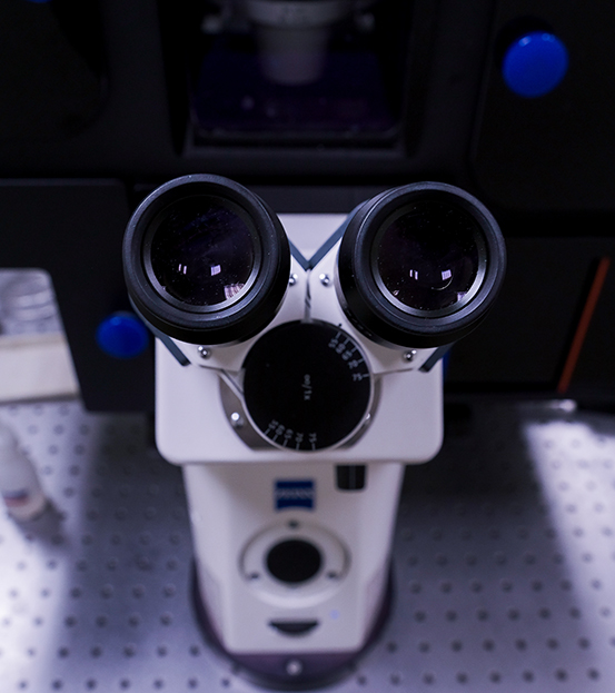 pathologie et cytologie